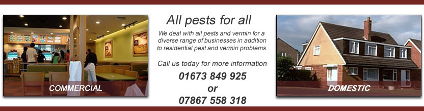 PBFS Pest Control Services Commercial & Domestic
